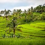 Bali, kies zelf hoe je dit eiland ervaart